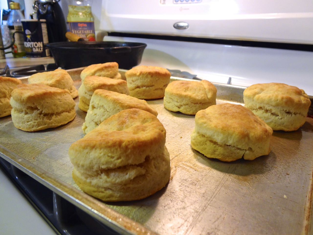 biscuit the classic baking powder baking powder biscuits easy baking ...
